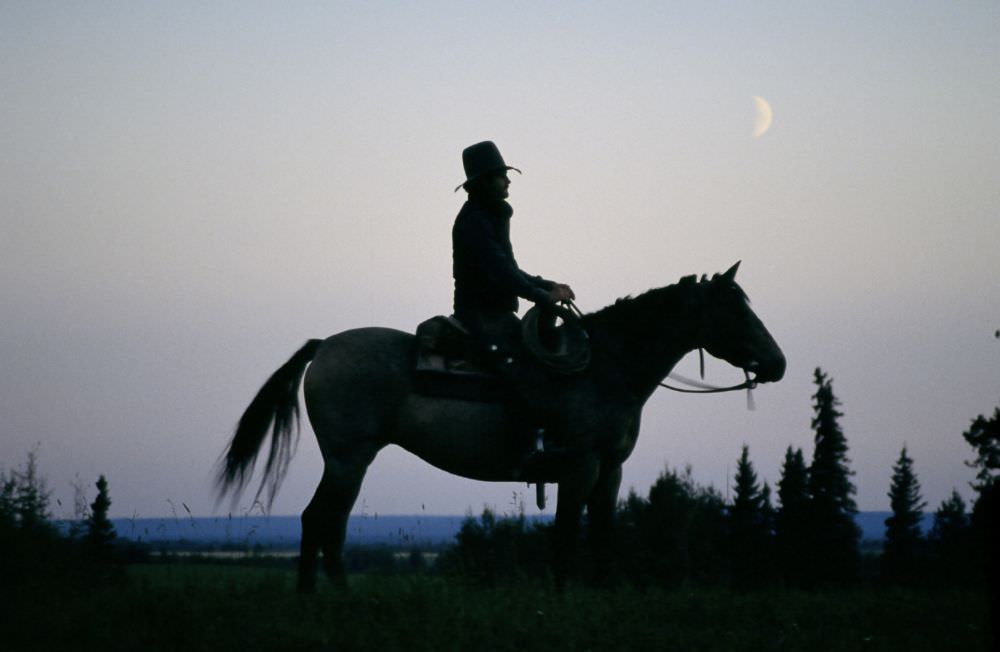 Horse and rider silhouette / Travel Alberta
